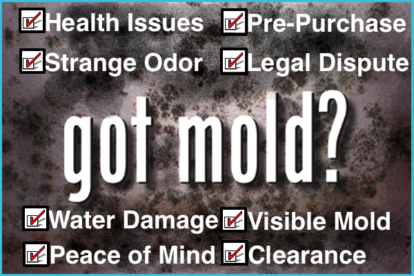 Mold Inspection Detroit
