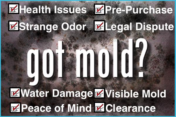 Mold Inspection Houston